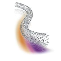 Ion Drug-Eluting Stent from Boston Scientific